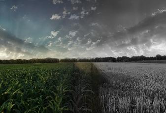 AgroShopping